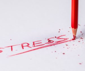 Series On Stress And Mental Health: An Introduction